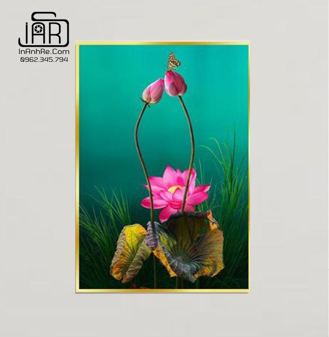 Tranh hoa sen dọc