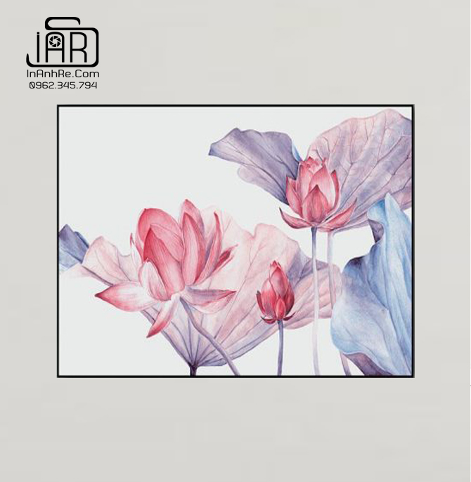 Tranh hoa sen vuông